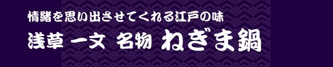 negima_shoukai